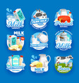 dairy farm products milk butter and cheese vector image vector image