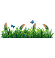 flower and grass for decor vector image vector image