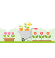 gardening background in flat design us as vector image vector image