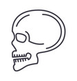 skull front view line icon sign vector image vector image