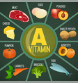 vitamin a foods vector image vector image