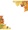 a frame of different autumn leaves ready template vector image vector image