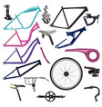 bike parts and cycling equipment vector image