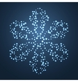 Bright Star Snowflake vector image