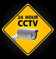 CCTV Security Camera vector image vector image