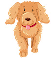 Dog with fluffy brown fur vector image