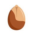 peanut icon flat style vector image vector image
