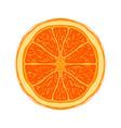 sliced colored sketch style fruit orange vector image