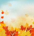 Vintage autumn background with colorful leaves vector image