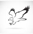 eagle design on white background wild animals vector image