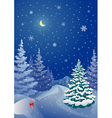 Christmas coniferous forest vector image