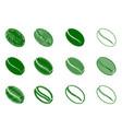 coffee bean - green color vector image vector image