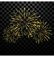 Golden holiday firework vector image vector image