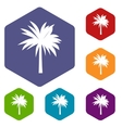 Palm icons set vector image vector image