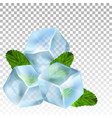 realistic ice cubes and mint leaves vector image vector image