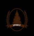 retro vintage pine cedar spruce logo design vector image