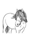 sketch horse head with long mane covered eyes vector image