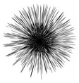 abstract artistic black and white geometric vector image vector image