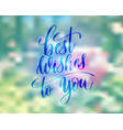 best wishes to you hand written lettering vector image vector image