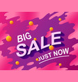 big sale text discount shopping concept vector image vector image