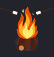 bonfire and burning vector image vector image