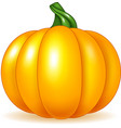 Cartoon pumpkin isolated on white background vector image vector image