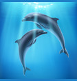 dolphin in sea realistic composition vector image vector image
