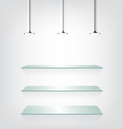 Glass shelves with spot light vector image
