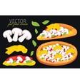 Isolated mushrooms pizza Fast food set vector image