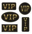 VIP icons vector image vector image