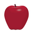a red apple vector image vector image