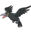 cartoon crow flying isolated on white background vector image vector image