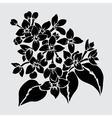 decorative lilac vector image vector image