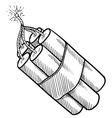 doodle dynamite vector image vector image