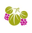 Three flat green leaves with purple berries or vector image vector image