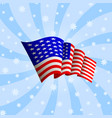 american flag icon waving icon of united states vector image vector image