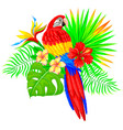 bright tropical composition with parrot palm tree vector image vector image