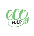 handwritten inscription eco food for healthy life vector image