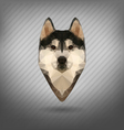 Husky polygon abstract triangle vector image vector image
