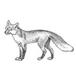 red fox wild animal symbol north and the vector image vector image