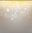 white sparks and golden stars glitter special vector image vector image