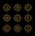 set luxury alphabet on the black background vector image