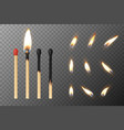 3d realistic match stick and different vector image vector image