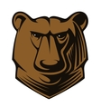 Big brown bear head vector image vector image