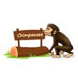 Cartoon zoo chimpanzee sign vector image vector image