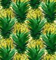 close lowpoly pineapple pattern vector image vector image