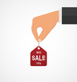 Concept of discount Hands holding sales tag vector image