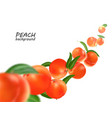 flying peach realistic 3d peaches vector image vector image