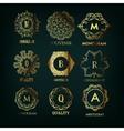 Set of luxury simple and elegant monogram vector image