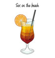 sex on the beach cocktail with orange decorations vector image vector image